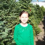 Christmas Lights - 115_8858.JPG
