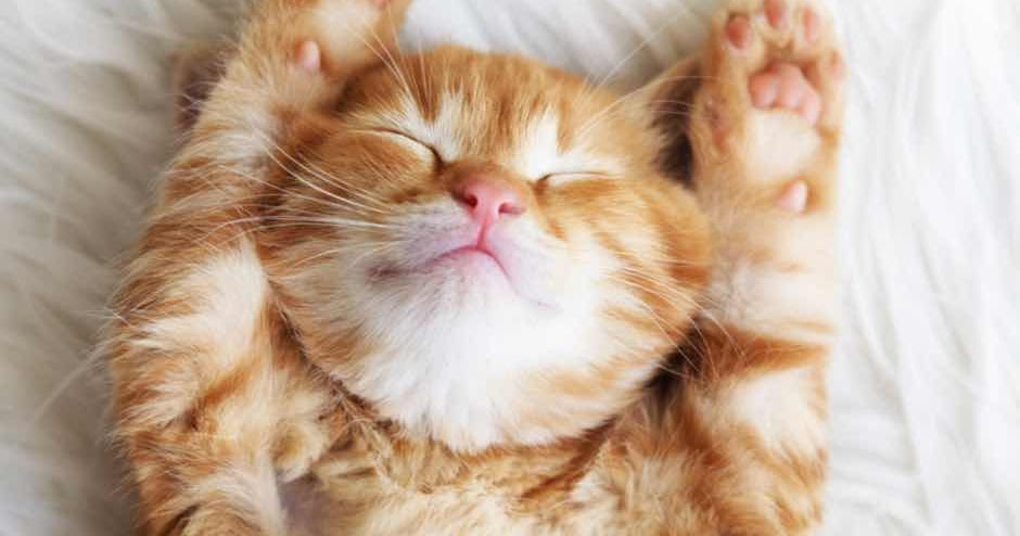 The 7 Most Effective Ways To Sleep Well At Night