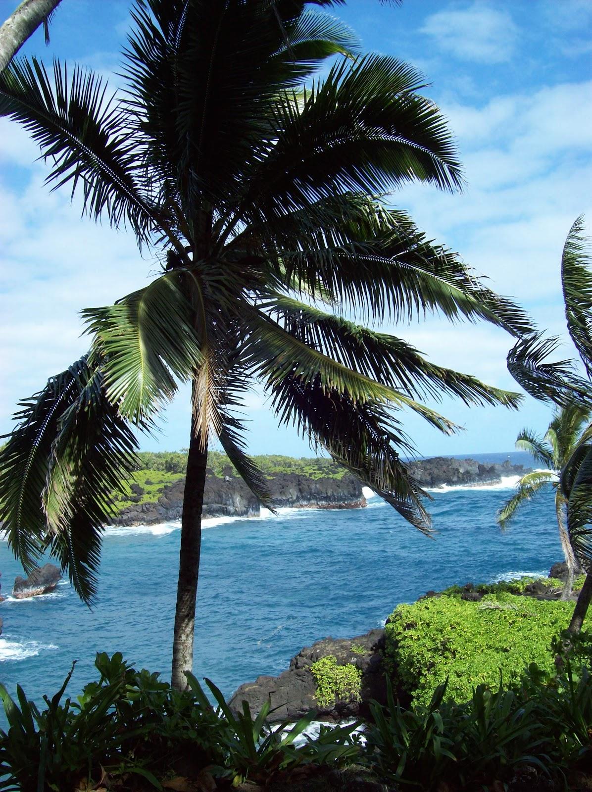 Hawaii Day 5 - 100_7481.JPG
