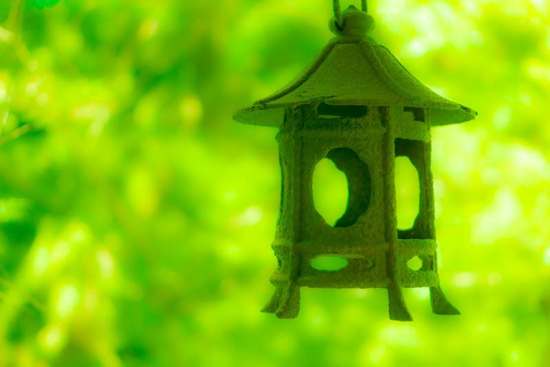 臥龍山荘 庭園 5