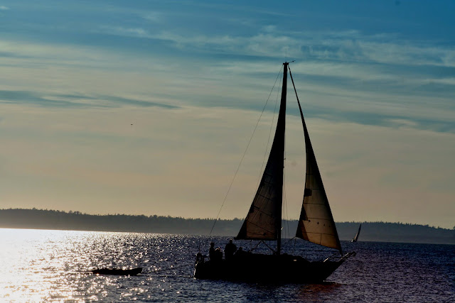 Sailboat in the waters of Bellingham Bay / Credit: Terry Brennan