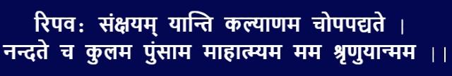 Durga Puja 2020: Durga Shatru Shanti Mantra (शत्रुओं के नाश के लिए)