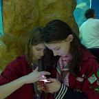 2012 03 Guides haus des Meeres (12).JPG