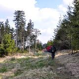 2014-04-13 - Waldführung am kleinen Waldstein (von Uwe Look) - DSC_0437.JPG