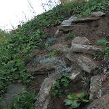 Альпийская горка на месте строительного мусора
