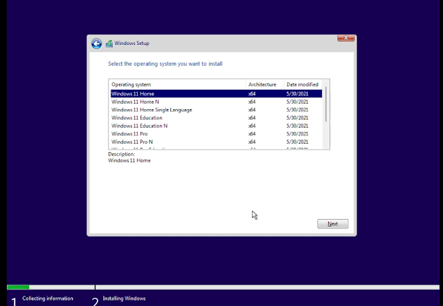 Select Windows 11 Version You wish to install