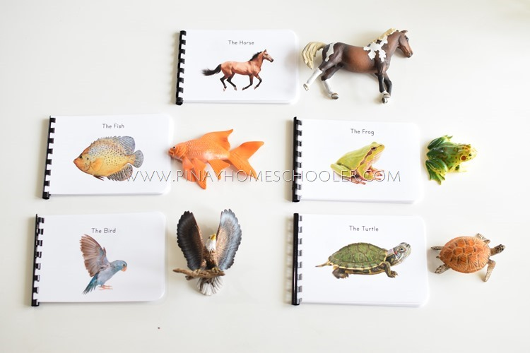 Montessori Animal Zoology booklets and the 3 part cards BUNDLE