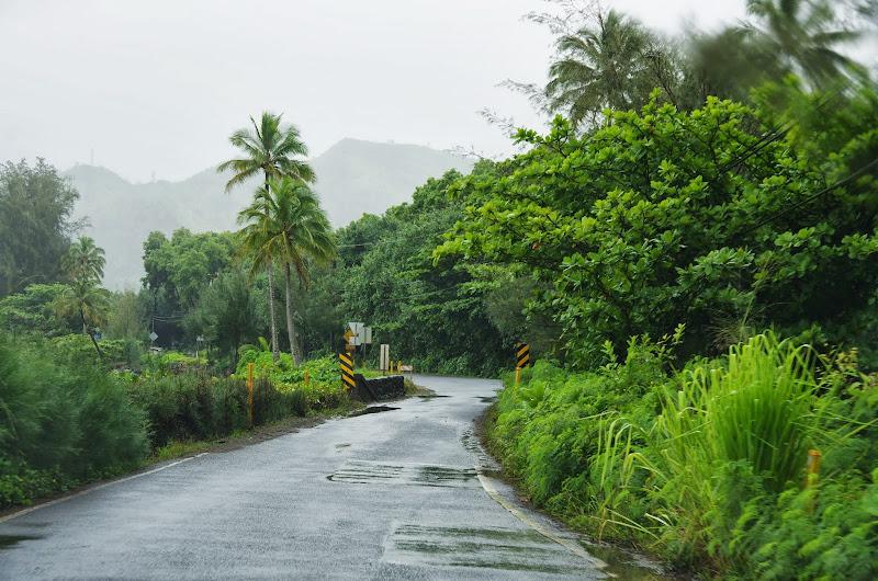 06-25-13 Annini Reef and Kauai North Shore - IMGP9311.JPG