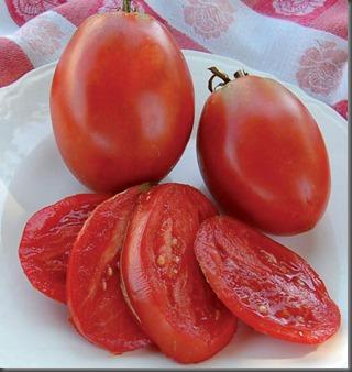 0107-amish-paste-tomato