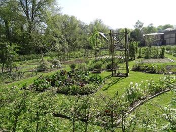 2018.04.21-009 jardin potager