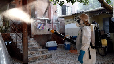 282 Zika Cases in Florida