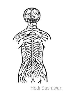 Penyakit pada Sistem Saraf Manusia