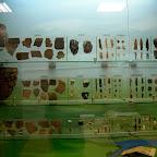 Археологический музей ВГПУ 012.jpg