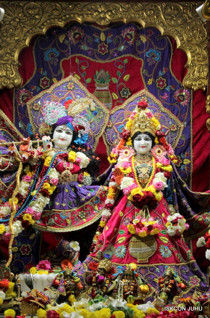 ISKCON Juhu Sringar Deity Darshan on 20th Jan 2017 (3)