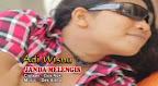 Lirik Lagu Bali Adi Wisnu - Janda Melengis