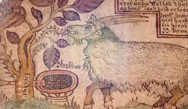 Vikings Got Drunk On Their Own Mead