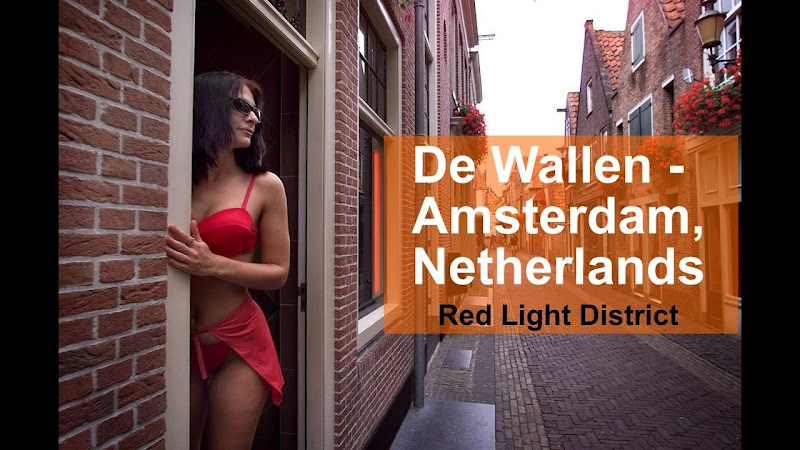 netherland prostituetion area
