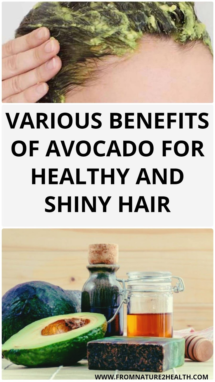 Various Benefits of Avocado for Healthy and Shiny Hair
