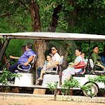 zoo-car.jpg
