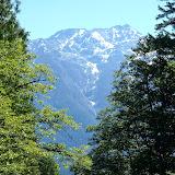 Ross Lake July 2014 - P7090104.JPG