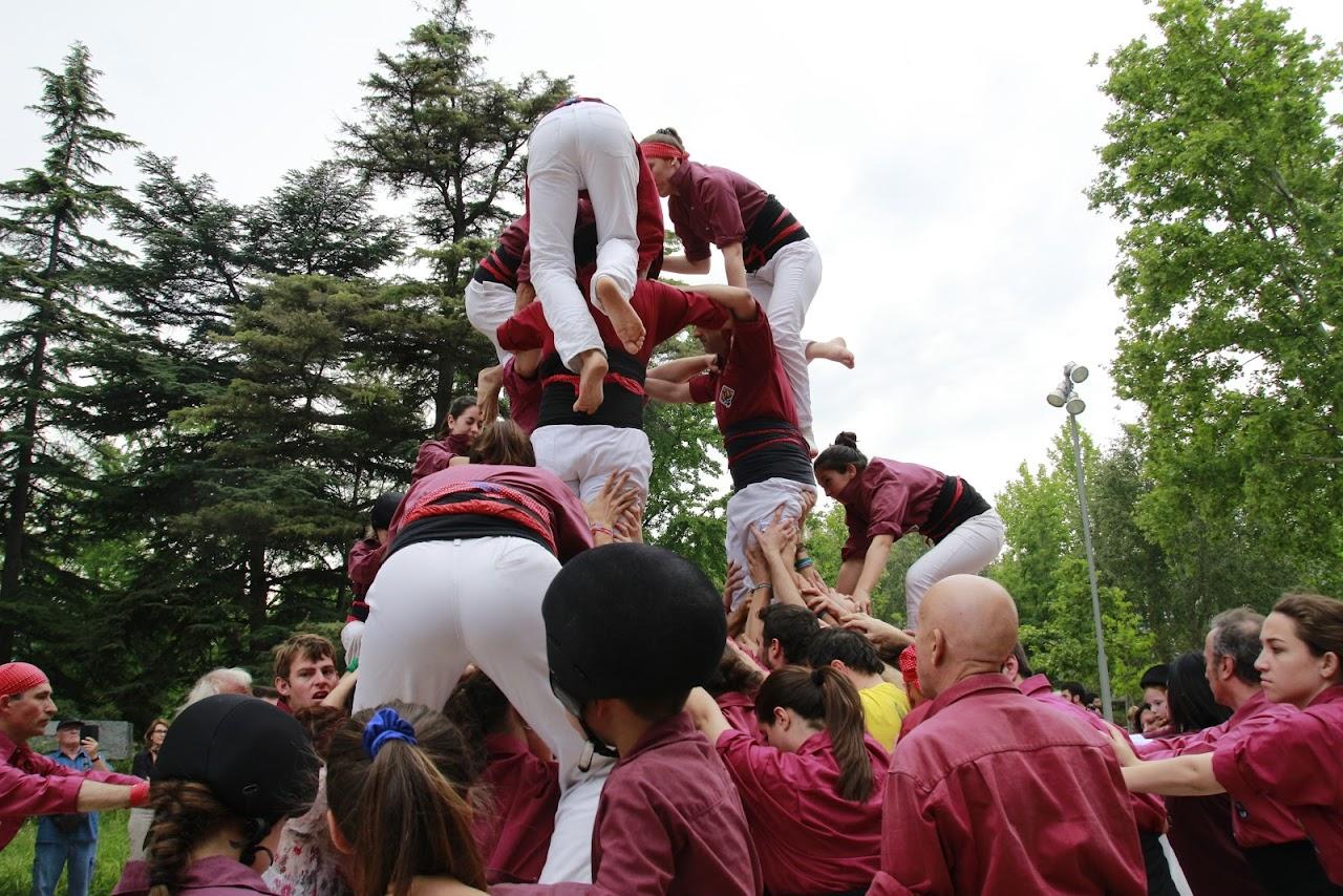 Actuació XXXVII Aplec del Caragol de Lleida 21-05-2016 - _MG_1636.JPG