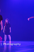 Han Balk Voorster Dansdag 2016-4650.jpg