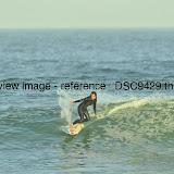 _DSC9429.thumb.jpg