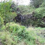 Hawaii Day 5 - 100_7408.JPG