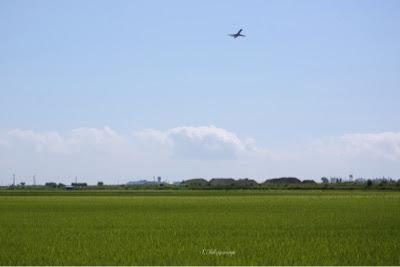 津波の大打撃を受けた仙台空港も復活