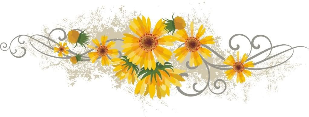 [yellowflowerdivider5]