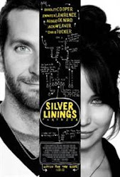 The Silver Linings Playbook - Tiểu thuyết tình yêu