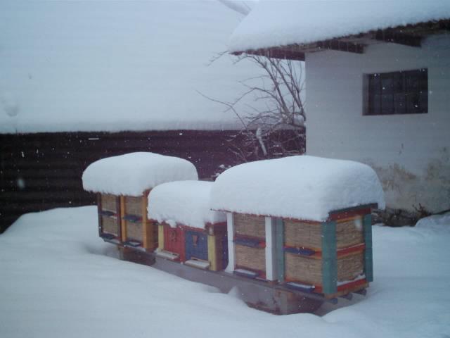 [Obrázky: ulik13+v+zime.jpg]