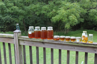 PLC Honey Harvest