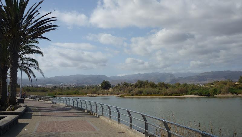 La Charca, Maspalomas Gran Canaria