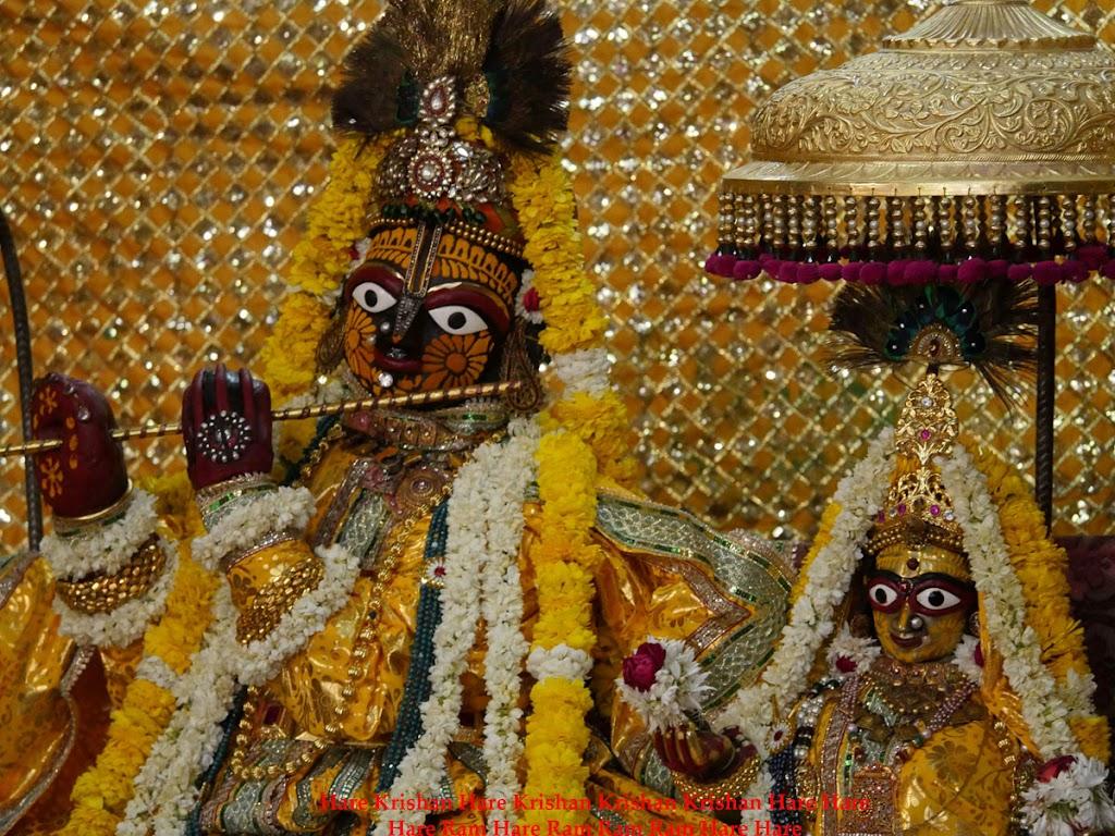 Radha Govind Devji Deity Darshan 2 April  2016  (1)