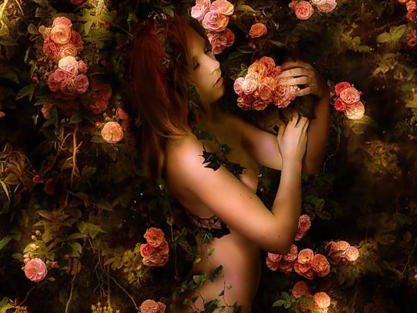 Girl In Rose Bush, Magic Beauties 3