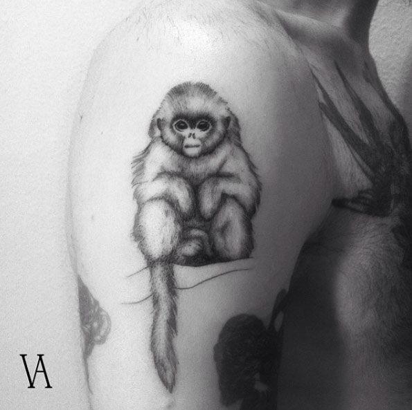 este_macaco_neve