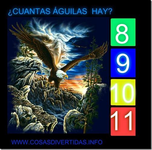 9 AGUILAS2