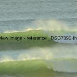_DSC7390.thumb.jpg