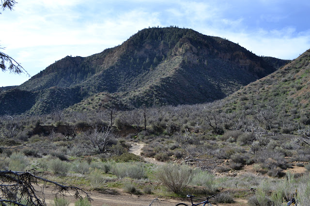 Tinta Creek