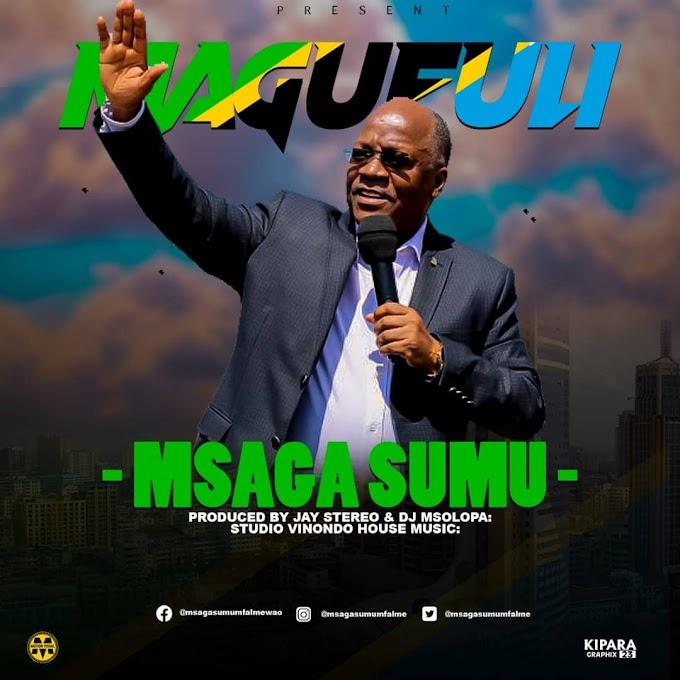 AUDIO | Msaga sumu – Magufuli | Download new song