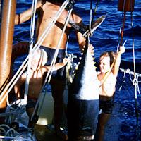 75_Solomons big fish.jpg