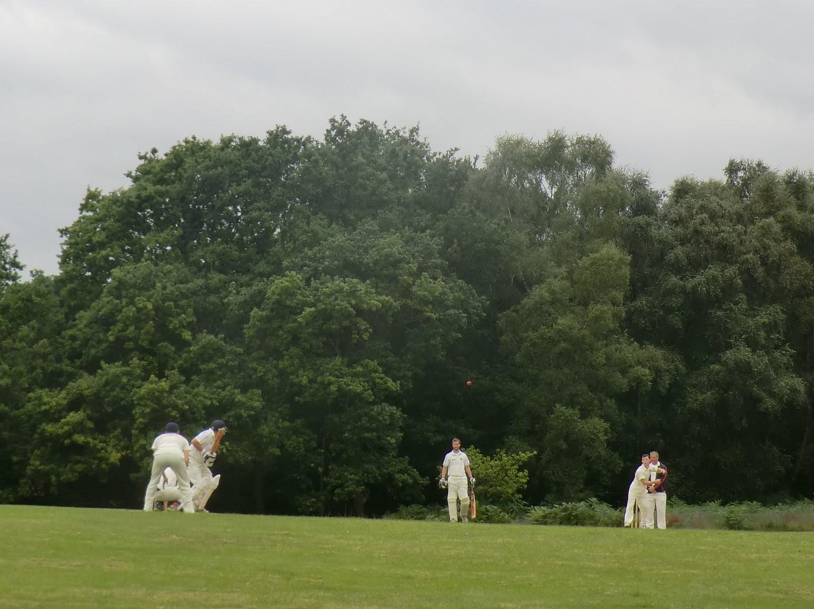 CIMG5928 Cricket at Coleman's Hatch
