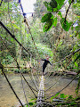 Jeff Wade on the Rope Bridge at Lubang Cina, Mulu 2013  | photo © Andy Harp