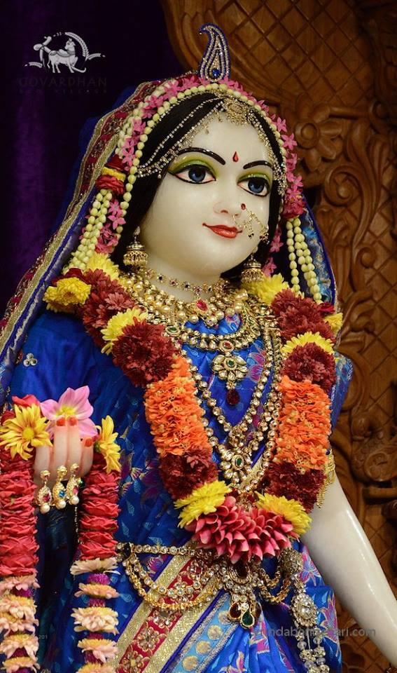 ISKCON GEV (Wada) Deity Darshan 14 Jan 2016 (6)