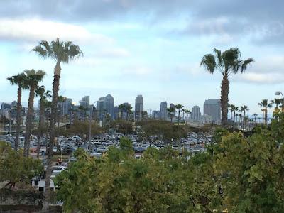 Utsikt mot San Diego, bak noen palmer.