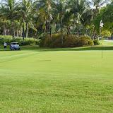 2015 Golf Tournament - 2015%2BLAAIA%2BConvention-1493.jpg