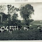 boerderij2.jpg