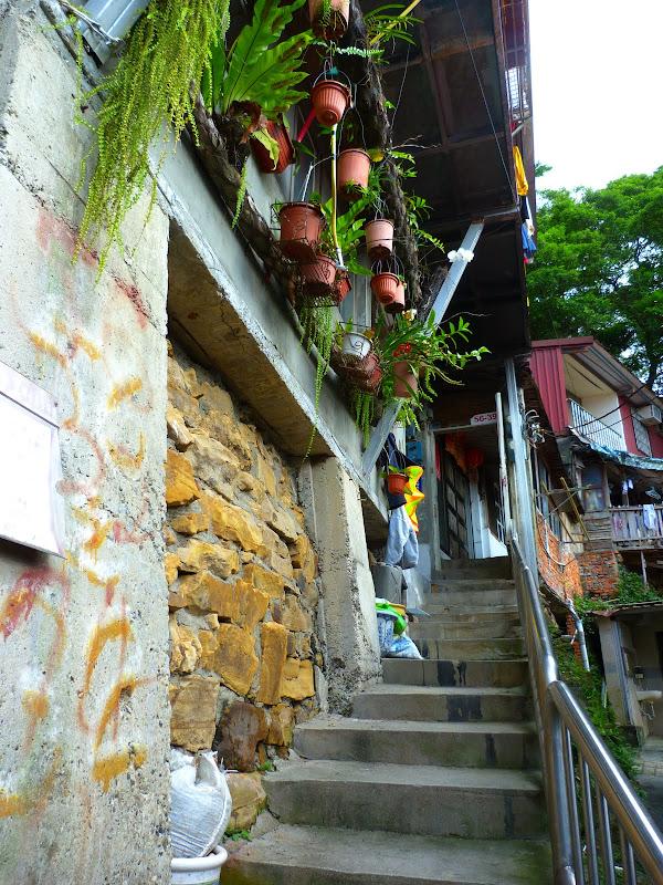 Taipei. Si Shou shan, en plein coeur de Taipei. Accès par un chemin bien plus sauvage. - P1240814.JPG