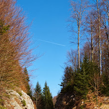Orientacijski vikend, Črni dol 2007 - P0166079.JPG